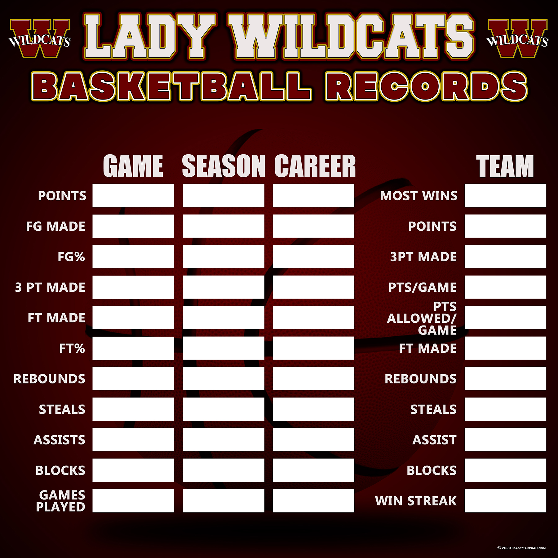 Houston - Cypress Woods Girls Basketball record bd 48in x 48in