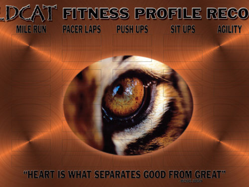 academic fitness posters and boards by image maker signs